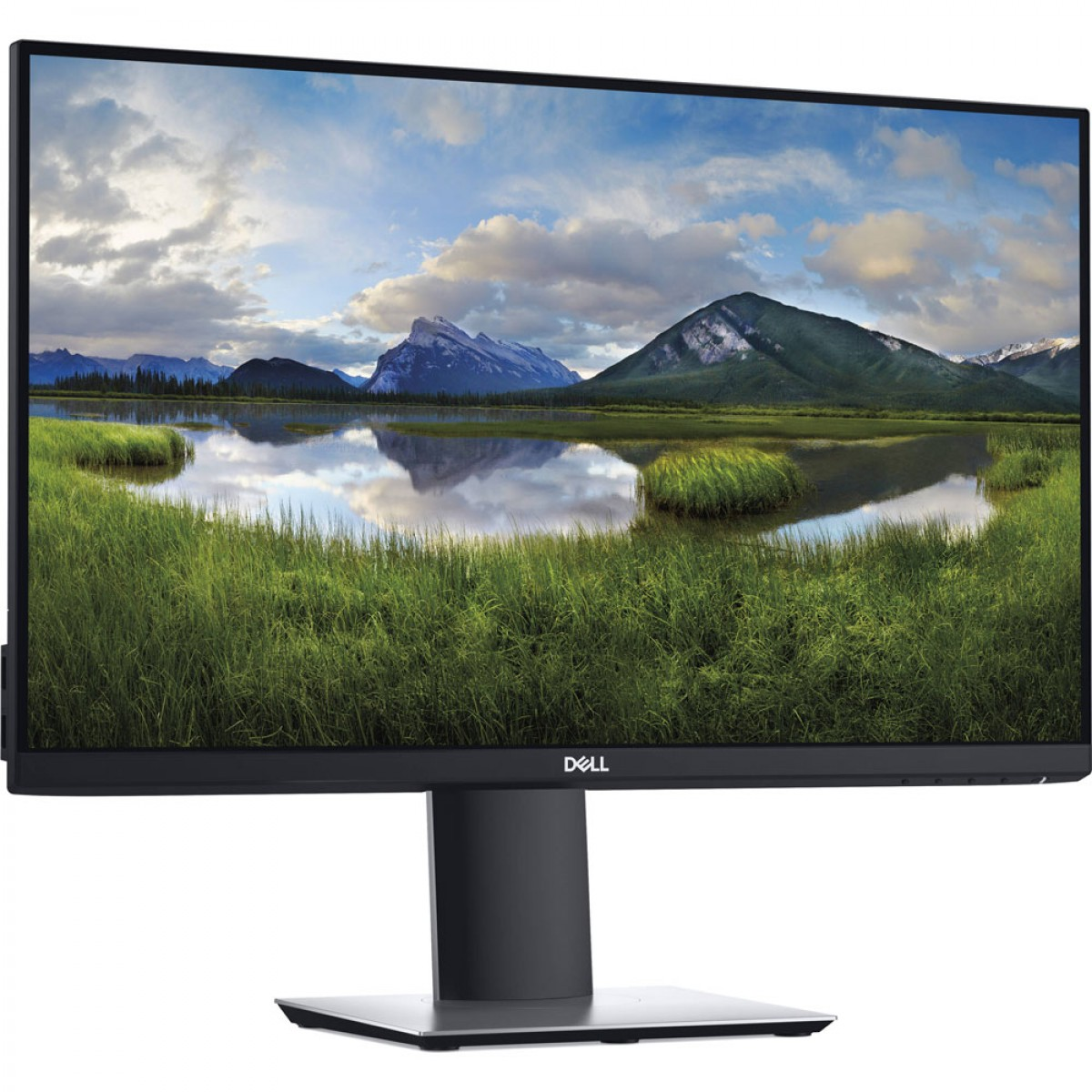 Dell P2419H 24'' 1080P IPS Monitor